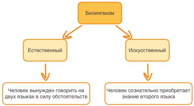 Билингвизм - это свободное владение двумя языками.