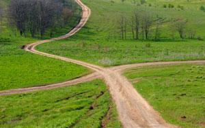 Путь к плохим привычкам короче. Но стоит ли искать легкие пути?