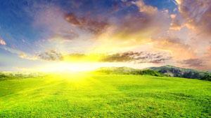 Все в ваших руках: начните менять свою жизнь к лучшему уже сегодня.
