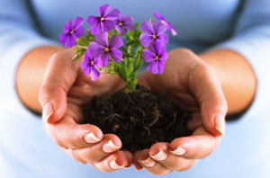 Высаживайте в своем саду знаний цветы, а не сорняки.