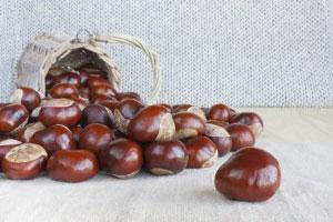An (old) chestnut — история «с бородой», старый избитый анекдот