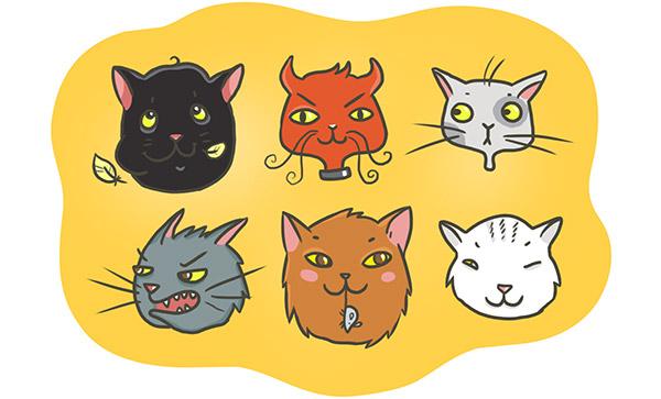 10 самых пушистых идиом о котиках на английском языке