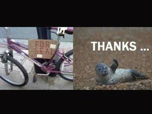 Для тюленя